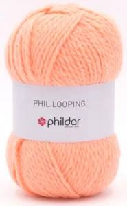 PHIL LOOPING (100G)