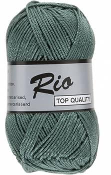 RIO 458 vert fougère