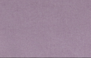 Canvas 032 violet